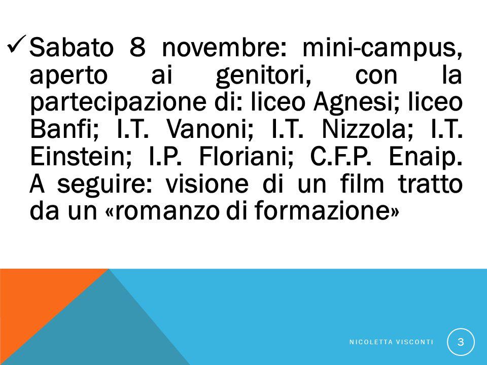 Sabato 8 novembre: mini-campus, aperto ai genitori, con la partecipazione di: liceo Agnesi; liceo Banfi; I.T. Vanoni; I.T. Nizzola; I.T. Einstein; I.P. Floriani; C.F.P. Enaip. A seguire: visione di un film tratto da un «romanzo di formazione»