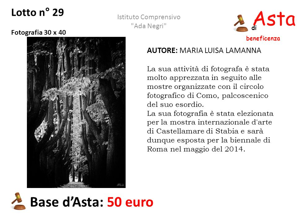 Asta beneficenza Base d'Asta: 50 euro Lotto n° 29