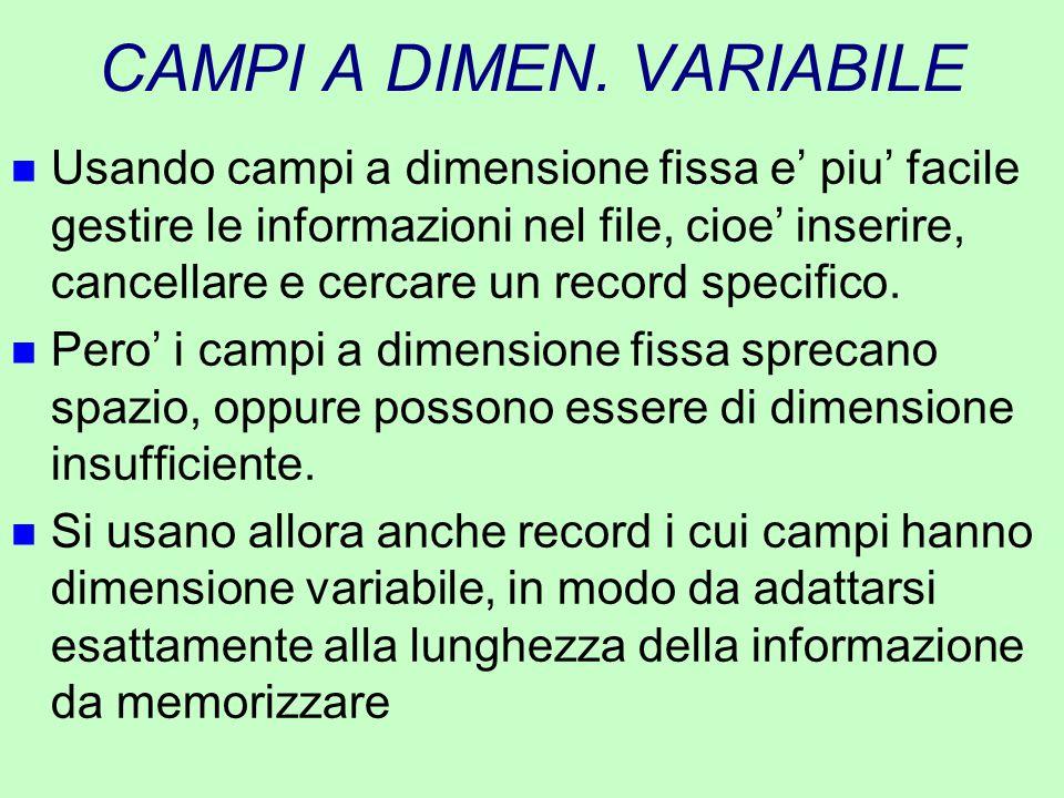 CAMPI A DIMEN. VARIABILE