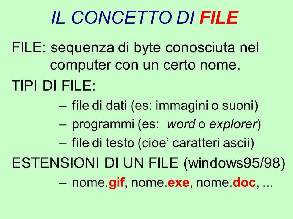 IL CONCETTO DI FILE FILE: sequenza di byte conosciuta nel computer con un certo nome. TIPI DI FILE: