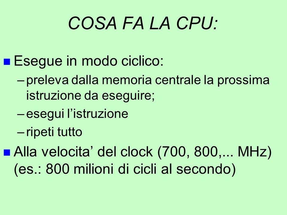 COSA FA LA CPU: Esegue in modo ciclico: