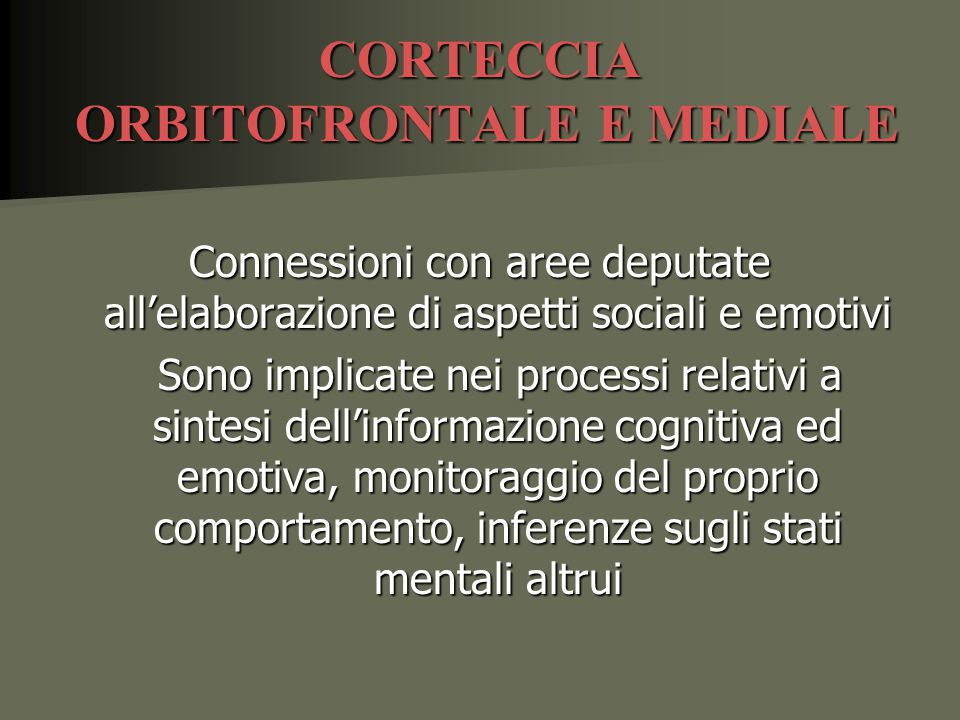 CORTECCIA ORBITOFRONTALE E MEDIALE