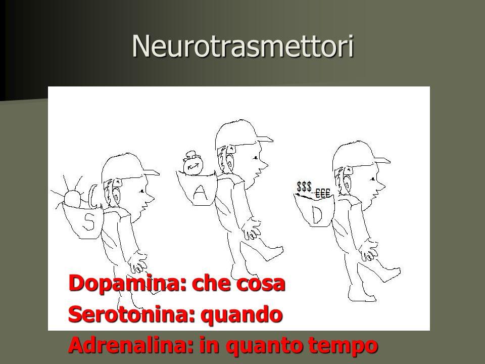Neurotrasmettori Dopamina: che cosa Serotonina: quando Adrenalina: in quanto tempo