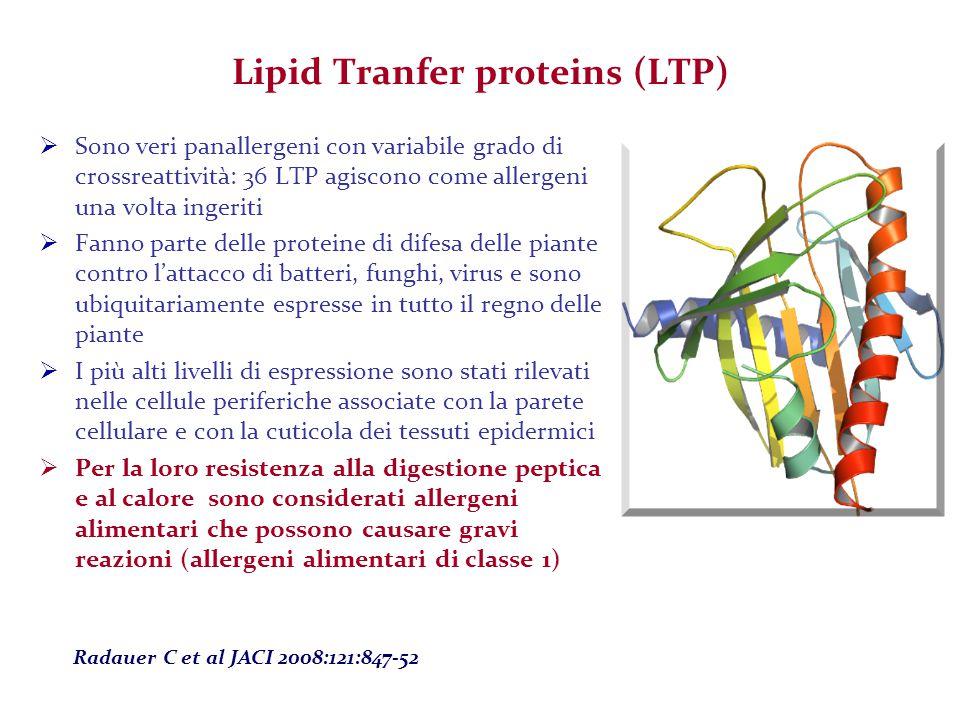 Lipid Tranfer proteins (LTP)