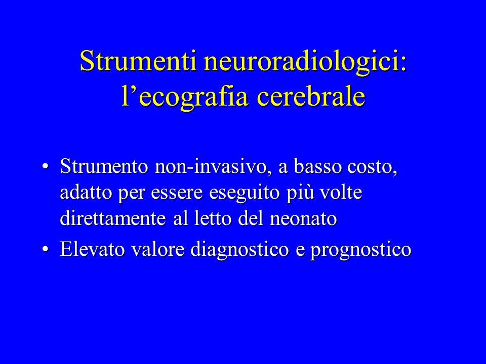 Strumenti neuroradiologici: l'ecografia cerebrale