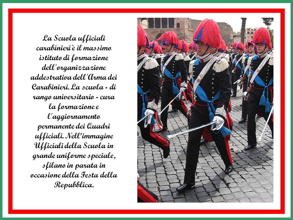 La Scuola ufficiali carabinieri è il massimo istituto di formazione dell organizzazione addestrativa dell Arma dei Carabinieri.