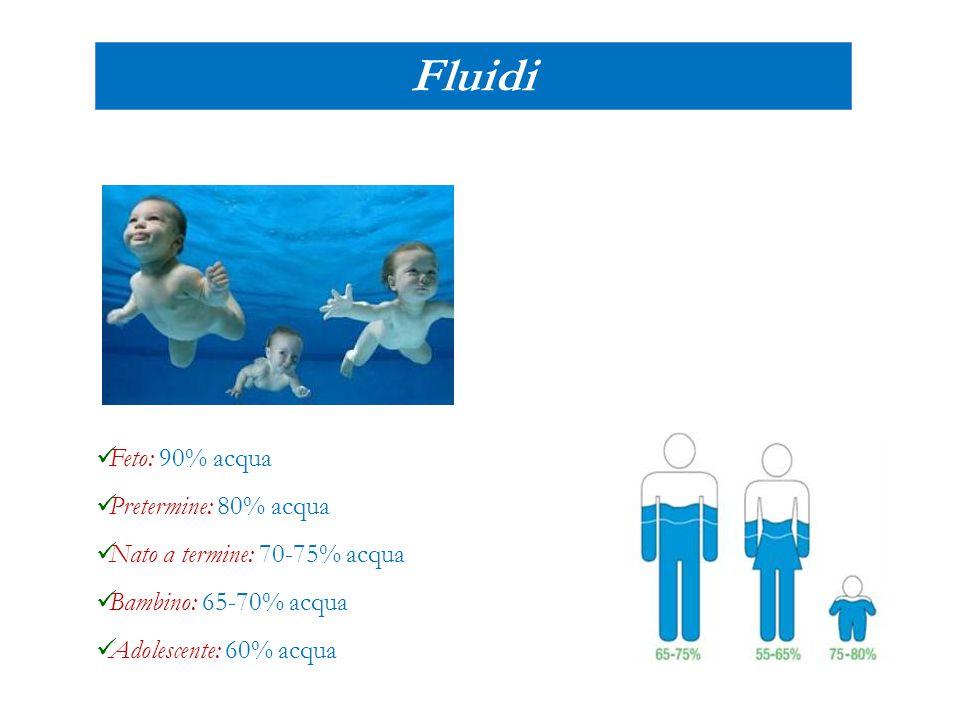 Fluidi Feto: 90% acqua Pretermine: 80% acqua