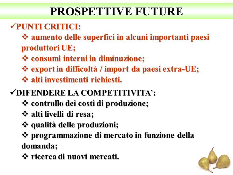 PROSPETTIVE FUTURE PUNTI CRITICI: