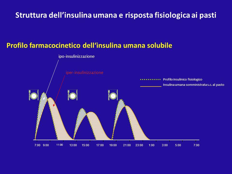Struttura dell'insulina umana e risposta fisiologica ai pasti