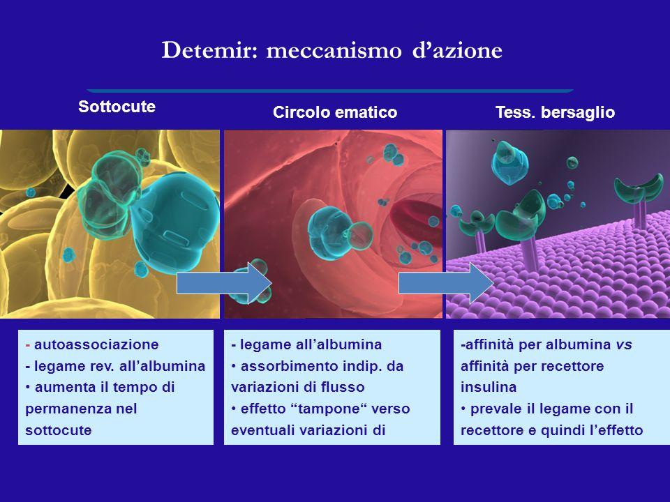 Detemir: meccanismo d'azione