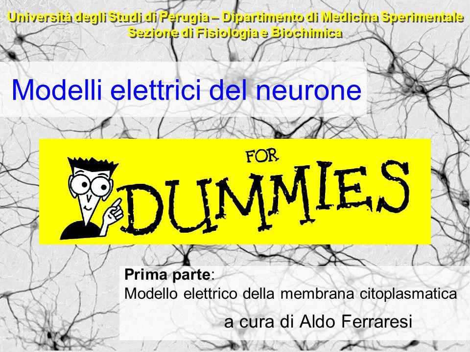 Modelli elettrici del neurone