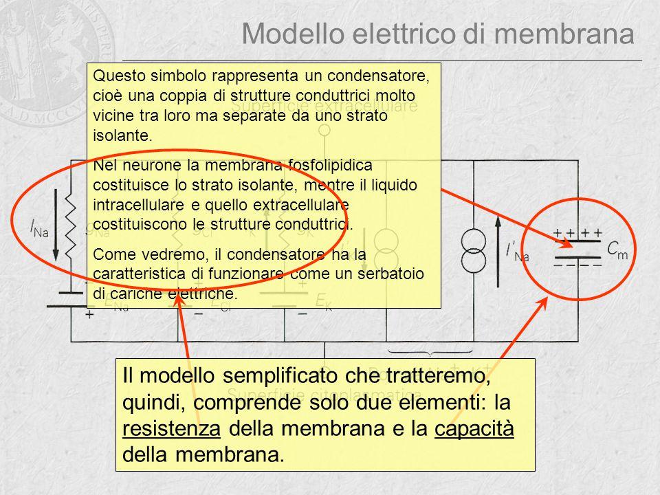 Modello elettrico di membrana