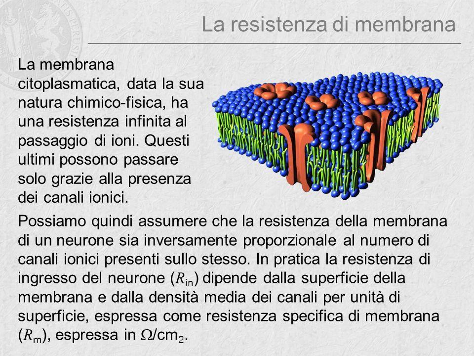 La resistenza di membrana