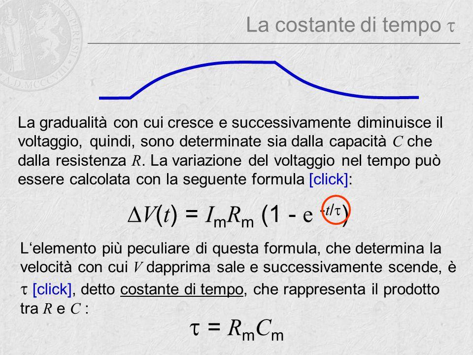 t = RmCm DV(t) = ImRm (1 - e -t/t) La costante di tempo t