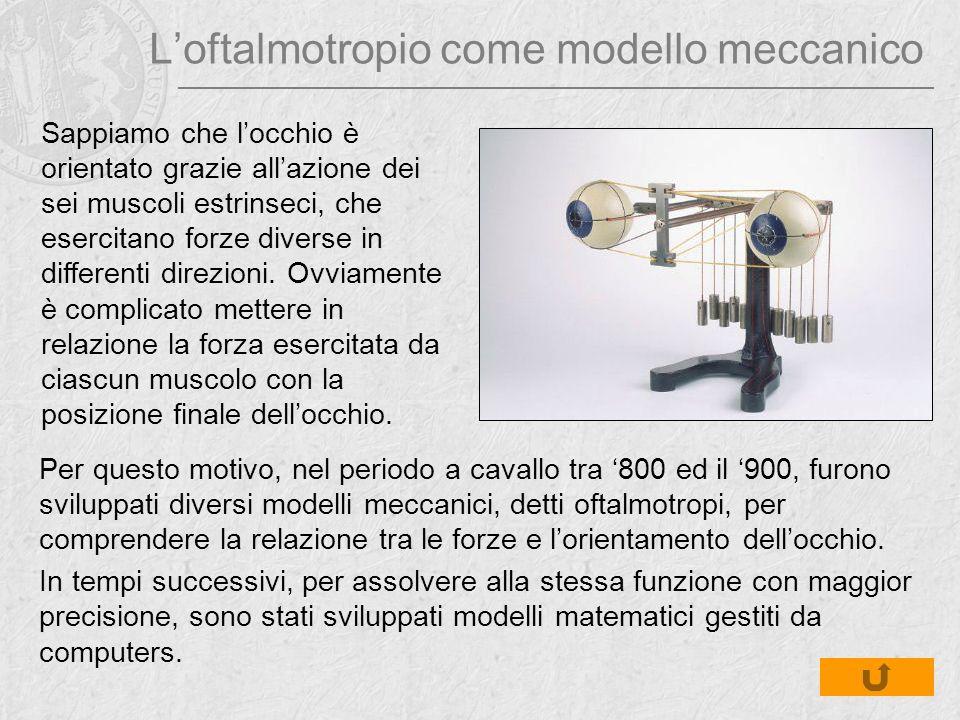 L'oftalmotropio come modello meccanico