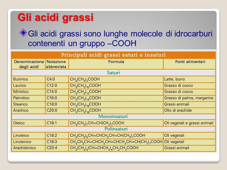 Gli acidi grassi Gli acidi grassi sono lunghe molecole di idrocarburi contenenti un gruppo –COOH