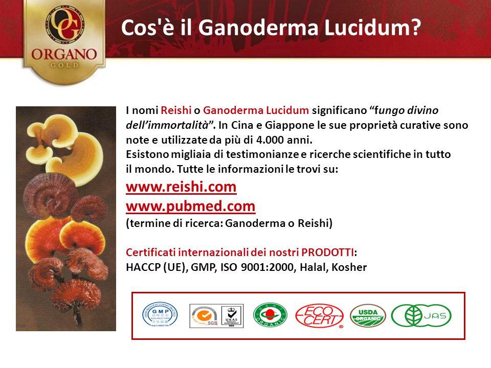 2.) Ganoderma Lucidum Cos è il Ganoderma Lucidum www.reishi.com