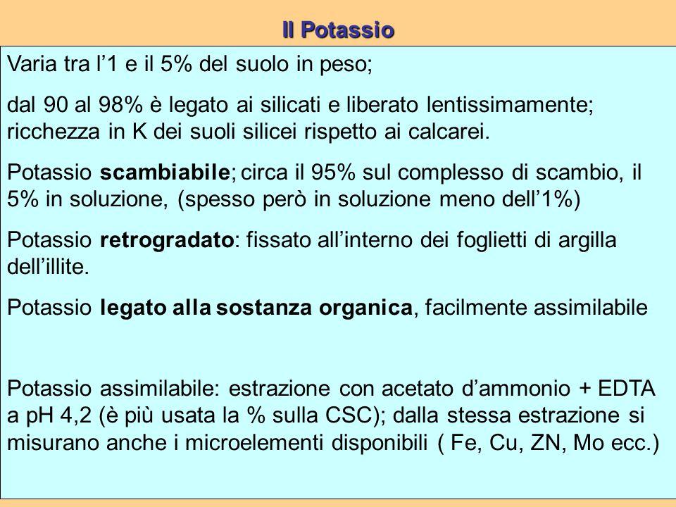 Il Potassio Varia tra l'1 e il 5% del suolo in peso;