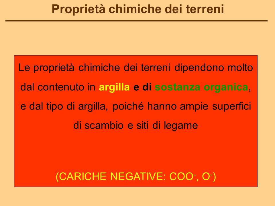 (CARICHE NEGATIVE: COO-, O-)