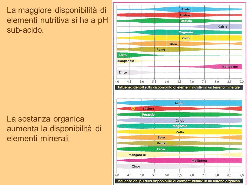 La maggiore disponibilità di elementi nutritiva si ha a pH sub-acido.