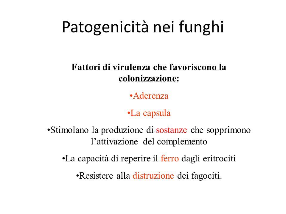 Patogenicità nei funghi