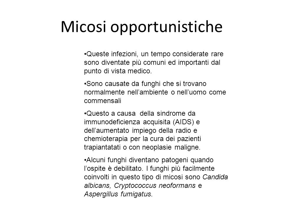 Micosi opportunistiche