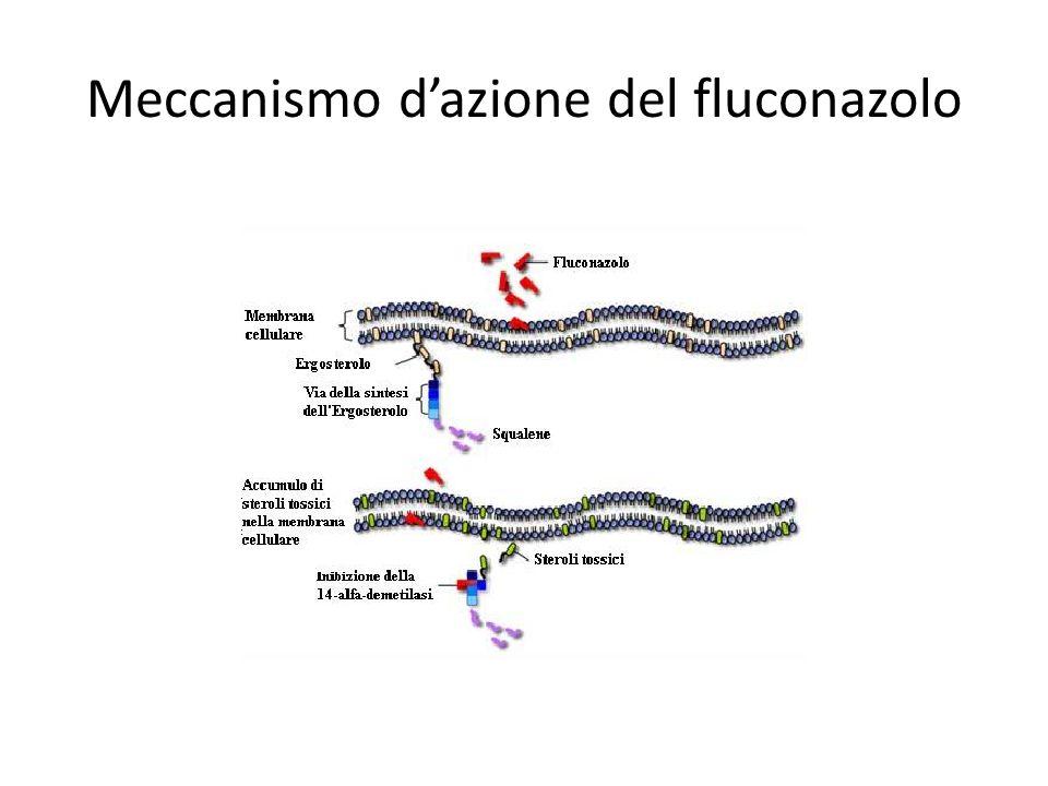 Meccanismo d'azione del fluconazolo