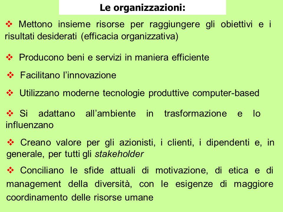 Le organizzazioni: Mettono insieme risorse per raggiungere gli obiettivi e i risultati desiderati (efficacia organizzativa)
