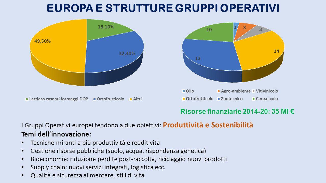 EUROPA E STRUTTURE GRUPPI OPERATIVI