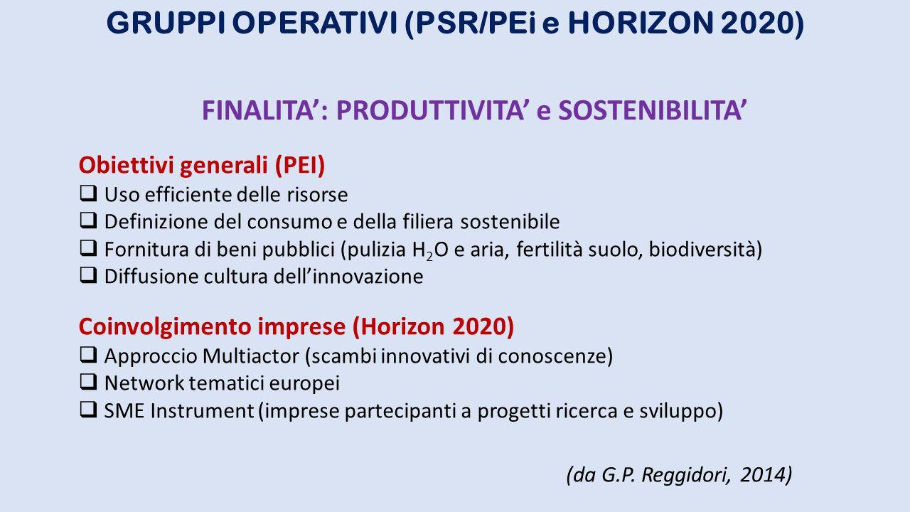 GRUPPI OPERATIVI (PSR/PEi e HORIZON 2020)