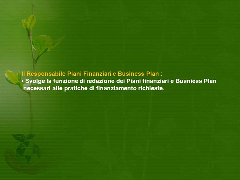 Il Responsabile Piani Finanziari e Business Plan :