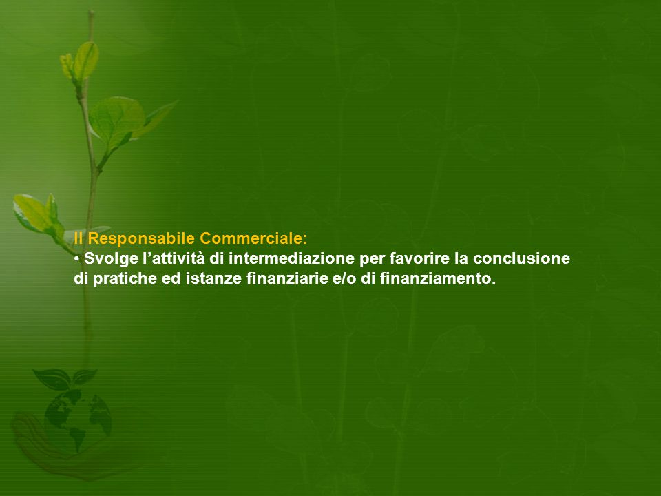 Il Responsabile Commerciale: