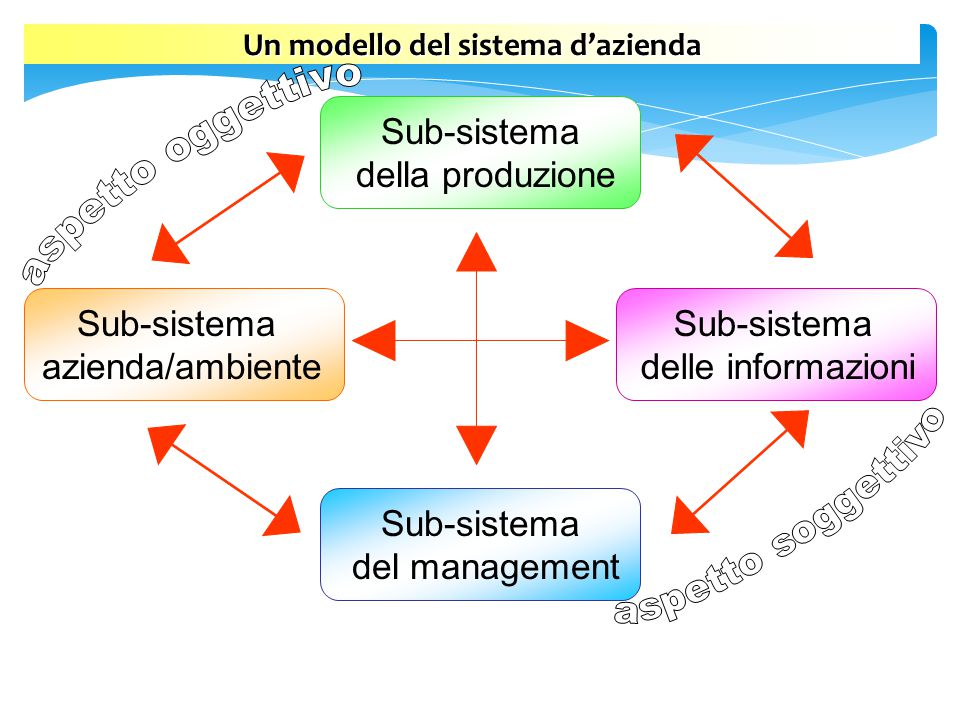 Un modello del sistema d'azienda