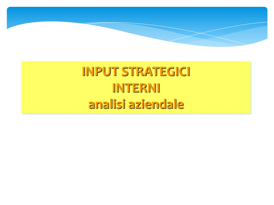 INPUT STRATEGICI INTERNI analisi aziendale