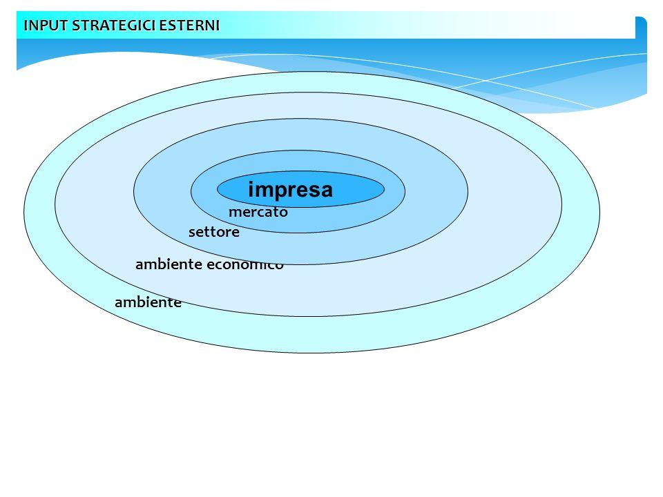 impresa INPUT STRATEGICI ESTERNI settore ambiente economico mercato