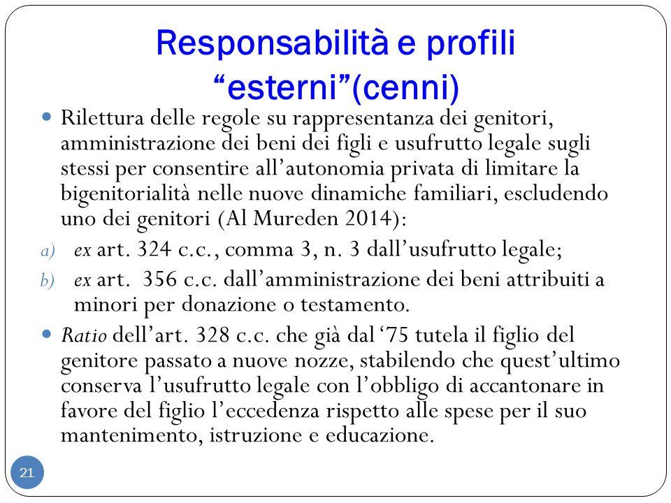 Responsabilità e profili esterni (cenni)