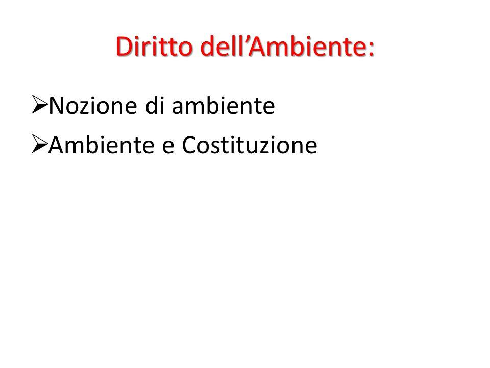 Diritto dell'Ambiente: