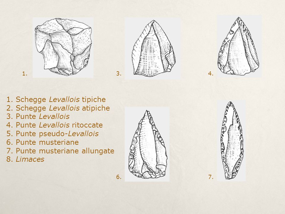 1. Schegge Levallois tipiche 2. Schegge Levallois atipiche