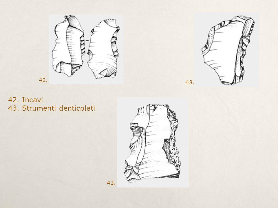 43. Strumenti denticolati