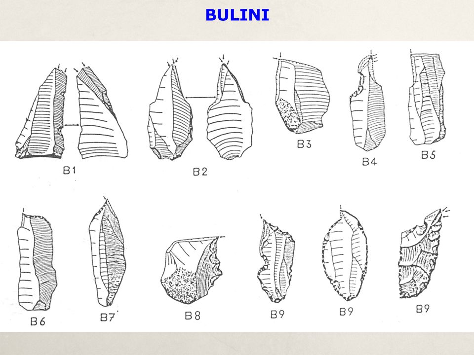 BULINI