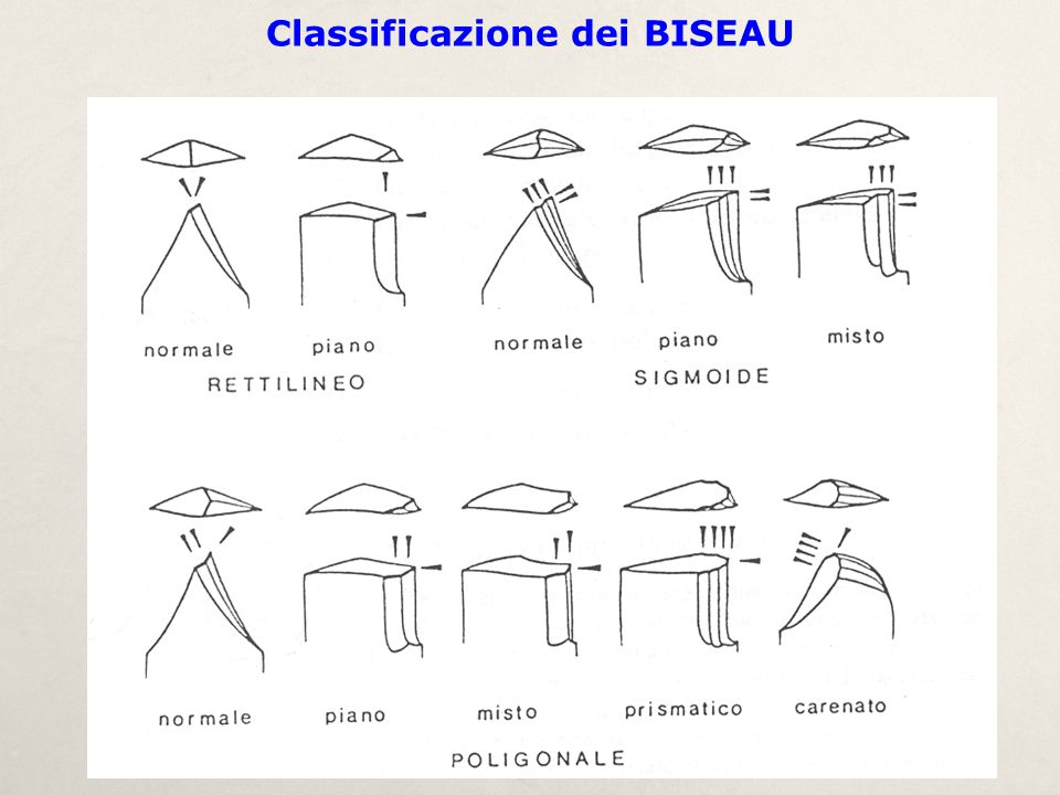 Classificazione dei BISEAU