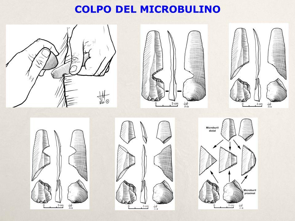 COLPO DEL MICROBULINO