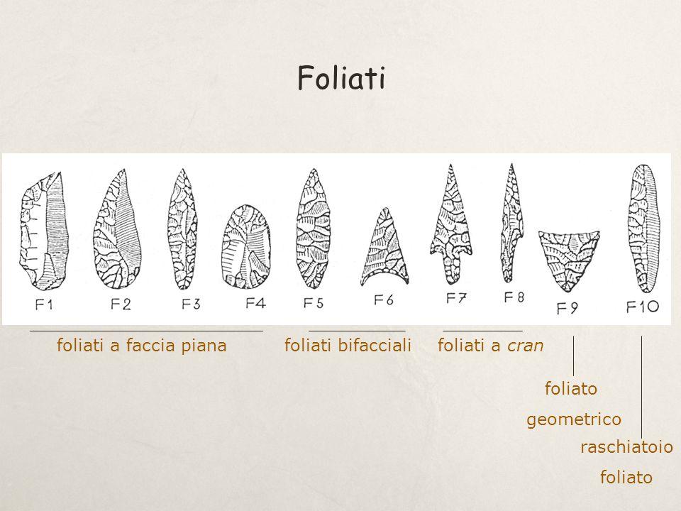 Foliati foliati a faccia piana foliati bifacciali foliati a cran
