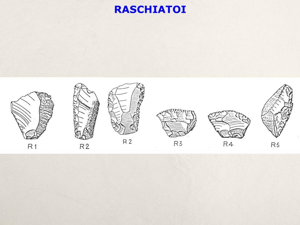 RASCHIATOI