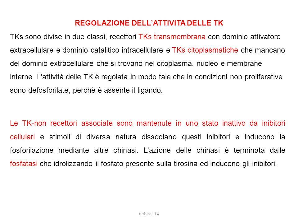 REGOLAZIONE DELL'ATTIVITA DELLE TK