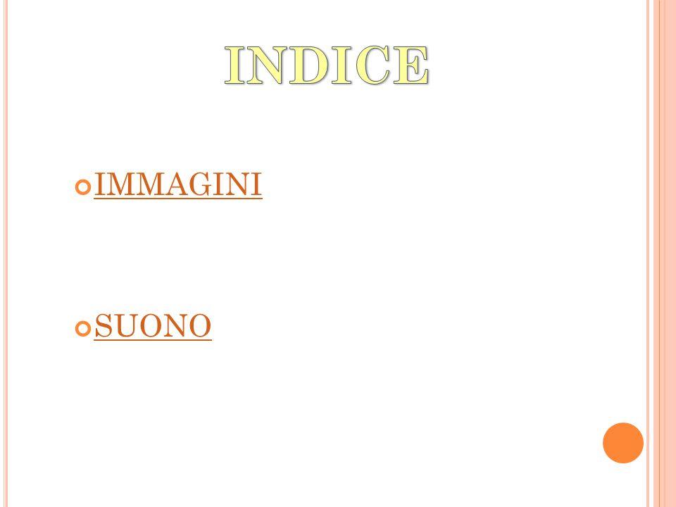 INDICE IMMAGINI SUONO