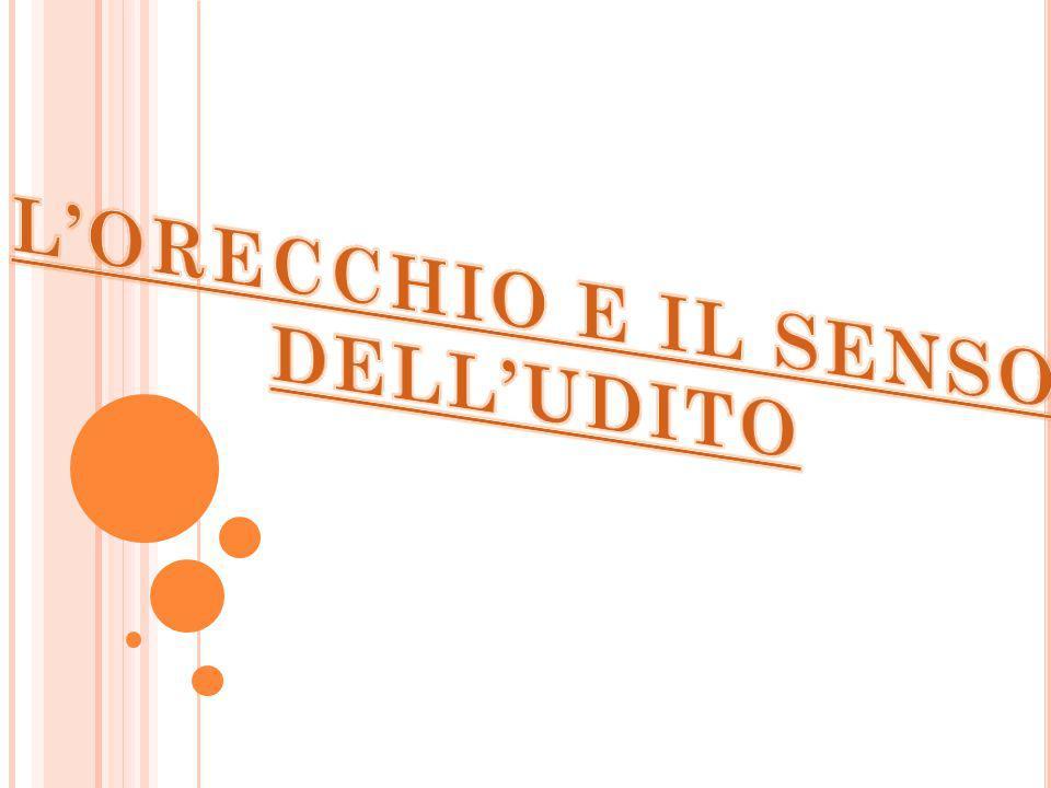 L'ORECCHIO E IL SENSO DELL'UDITO