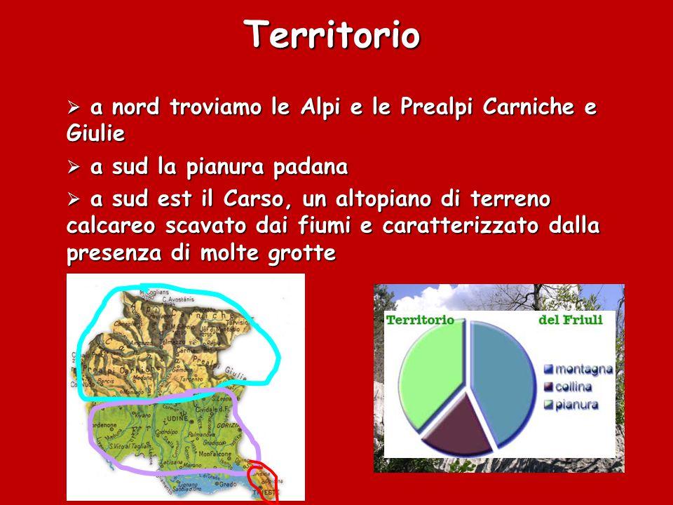 Territorio a nord troviamo le Alpi e le Prealpi Carniche e Giulie