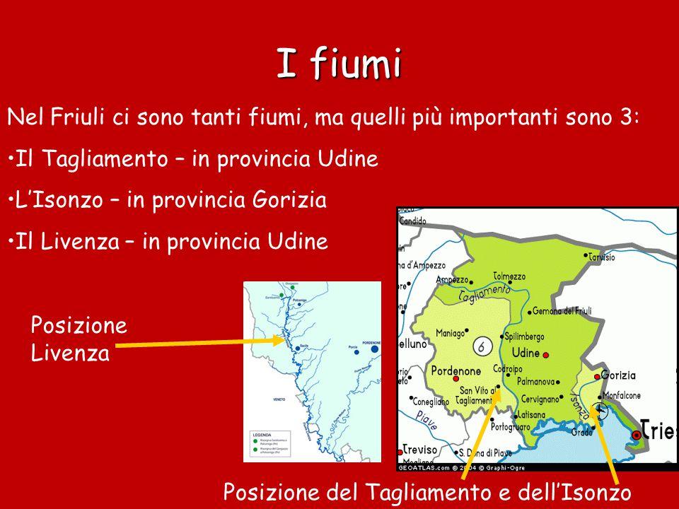 I fiumi Nel Friuli ci sono tanti fiumi, ma quelli più importanti sono 3: Il Tagliamento – in provincia Udine.