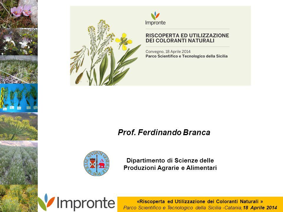 Prof. Ferdinando Branca